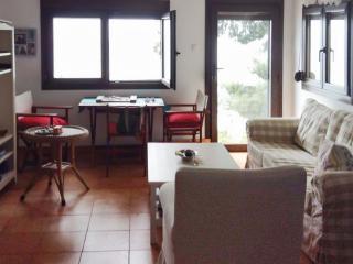 Sunny apartment with beach access - Mola Kalyva vacation rentals