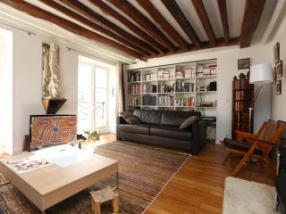 STUNNING COSY LOFT OF CHARACTER - Paris vacation rentals