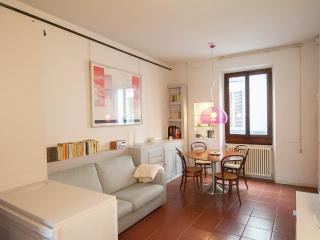 Appartamento confort WI-FI A/C e JACUZZI - Florence vacation rentals