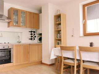 Charming Condo with Internet Access and Kettle - Bovec vacation rentals