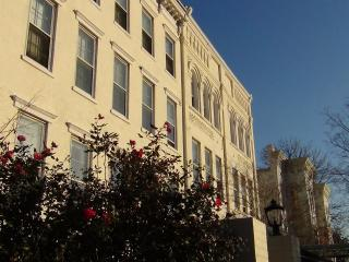 (2nd St #3B) 1 block to Capitol stunning views - Washington DC vacation rentals