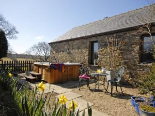 Beautiful 1 bedroom Cottage in Llandysul - Llandysul vacation rentals