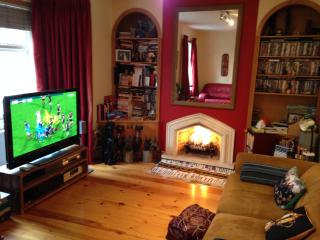 Large 3-bed apartment, great location, WC1 - London vacation rentals