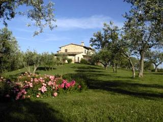 Comfortable Villa with Internet Access and A/C - Collepepe vacation rentals