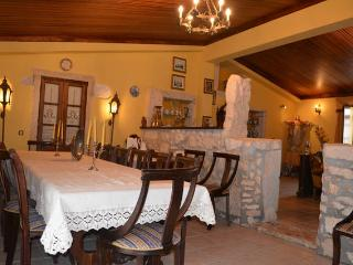 Country House Villa (5 rooms, 11 beds, 13 guests) - Ansiao vacation rentals