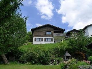 Gommiswald - Gommiswald vacation rentals
