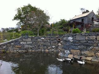 Casa da Vaca   Casas da Levada - Ponta do Pargo vacation rentals