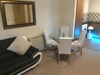 ++STUNNING 1 BED-Newcastle quayside++ - Newcastle upon Tyne vacation rentals