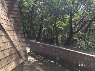 2 bedroom House with Dishwasher in Pioneer - Pioneer vacation rentals