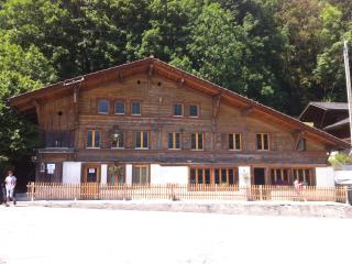 325 Year Old Chalet, Interlaken/Gstaad - Boltigen vacation rentals
