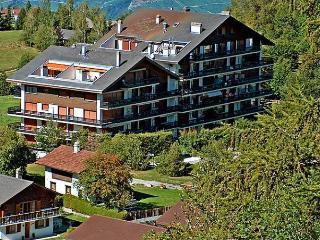 Muverans I B1 - Nendaz vacation rentals