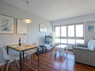 1 bedroom Condo with Internet Access in San Sebastian - Donostia - San Sebastian - Donostia vacation rentals