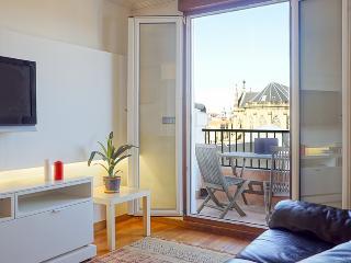 POKHARA APARTMENT - San Sebastian - Donostia vacation rentals