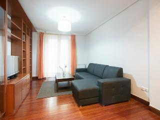 EASO APARTMENT - San Sebastian - Donostia vacation rentals