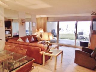 *104C*Beach House Condo*ON the beach! - Miramar Beach vacation rentals