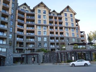 Finlayson Reach Executive on Bear Mountain - Langford vacation rentals