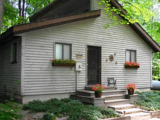 Betsie River Cabin with Up North charm   A/C WiFi - Thompsonville vacation rentals