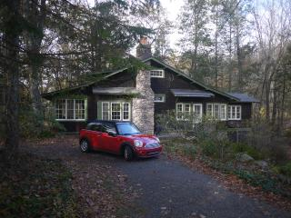 Cedar and Stone Lodge - Streamside and Modern - Phoenicia vacation rentals