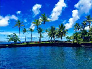 Nice House with Internet Access and Television - Pahoa vacation rentals