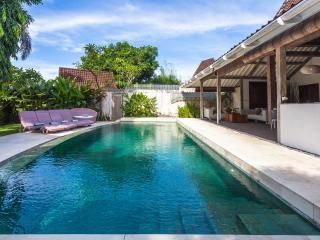 Villa Tess - Seminyak vacation rentals