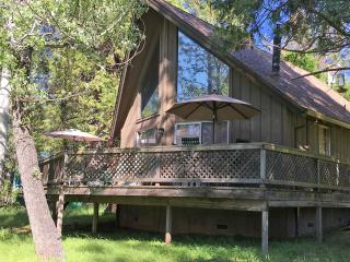 Yosemite - Pine Mountain Lake - Groveland - Cabin - Groveland vacation rentals