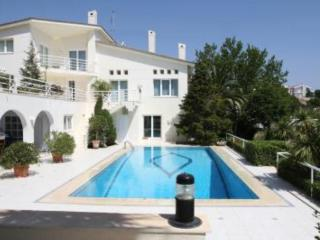 House with garden and pool - Rafina vacation rentals