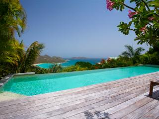 Lovely Villa with Internet Access and Housekeeping Optional - Saint Jean vacation rentals