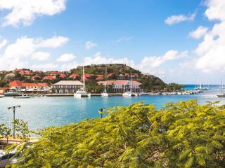 Villa Ira - Gustavia vacation rentals