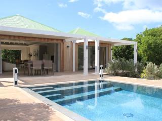 Villa Brino - Saint Jean vacation rentals
