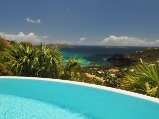 Bright Villa with Internet Access and A/C - Saint Jean vacation rentals