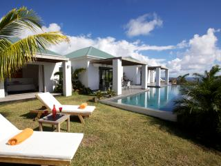 Perfect Villa with Internet Access and Water Views - Vitet vacation rentals