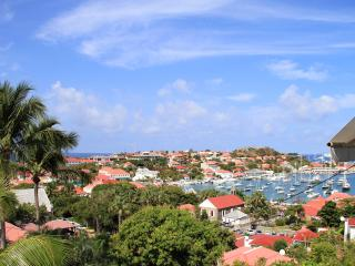Bright Gustavia Condo rental with Internet Access - Gustavia vacation rentals