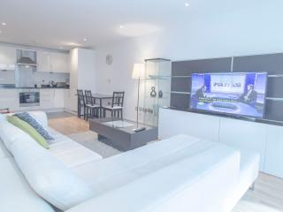Modern 2 Bed Apartment in Canary Wharf - London vacation rentals