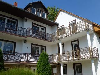 7 bedroom Resort with Internet Access in Heviz - Heviz vacation rentals