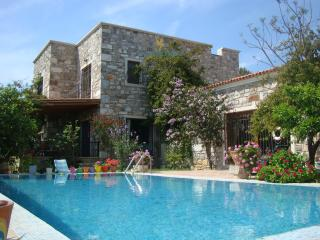 Perfect Bodrum Villa rental with Microwave - Bodrum vacation rentals