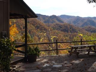 Up Up and Away- Amazing Views-Hot Tub-WB Fireplace-Fishing-Hiking-NOC 5 min. - Bryson City vacation rentals