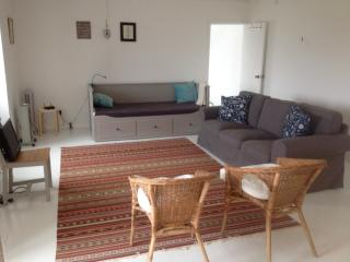 Lovely 1 bedroom House in Horta - Horta vacation rentals