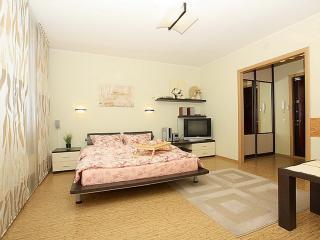 Romantic 1 bedroom Condo in Chelyabinsk - Chelyabinsk vacation rentals