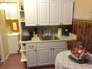 Comfortable Studio with Internet Access and A/C - Brandon vacation rentals