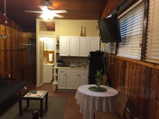 Comfortable Brandon Studio rental with Internet Access - Brandon vacation rentals