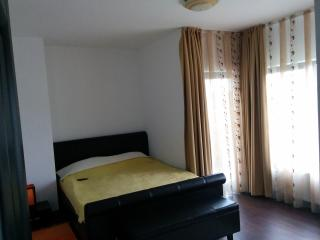 Calea Poienii Penthouse, Classic Double Room - Brasov vacation rentals