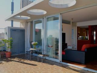 1 Bedroom Penthouse with 2 Private Terraces - Buenos Aires vacation rentals
