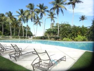 Charming apartment - Las Terrenas vacation rentals