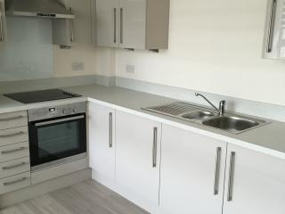 Stevenage Skyline - Luxury 2 bed 2 bath - Stevenage vacation rentals