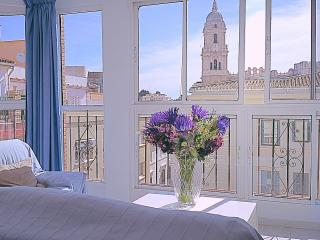 Penthouse 4 bedrooms in utmost historical center. - Malaga vacation rentals
