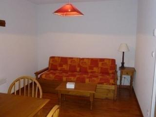 1 bedroom Apartment with Dishwasher in Ax-les-Thermes - Ax-les-Thermes vacation rentals