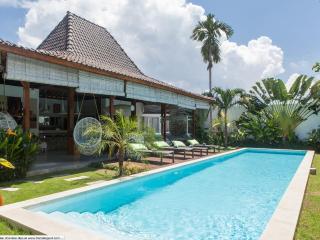 beautiful 4 bedrooms villa in Oberoi - Seminyak vacation rentals