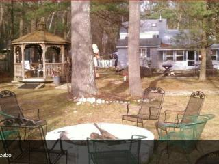 Nice Cottage with Internet Access and Boat Available - Douglas vacation rentals