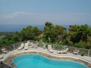 BIG Shogun Pool Home - Great Views, Close to Town - Kailua-Kona vacation rentals