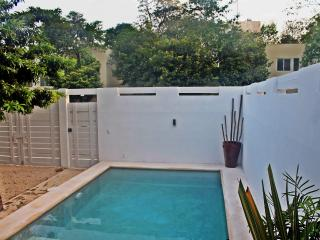 New 2 bed Villa with private pool   in Rivera Tulu - Tulum vacation rentals